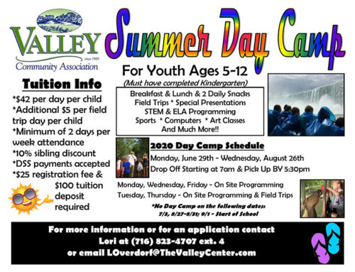 VCA TO HOLD SCHOOL AGE SUMMER DAY CAMP